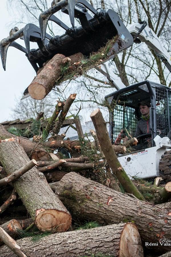 abattage-arbre-atlantique-elagage-loire-guenrouet-grimpeur-broyeur-arbres-grande-taille-5