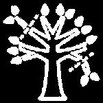 elagage-arbre-tronc-atlantique-elagage-loire-labaule-saint-nazaire