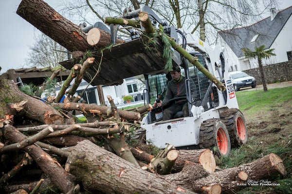 Démontage d'arbres à Savenay